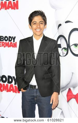 LOS ANGELES - MAR 5: Karan Brar at the premiere of 'Mr. Peabody & Sherman' at Regency Village Theater on March 5, 2014 in Los Angeles, California