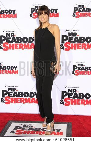 LOS ANGELES - MAR 5: Lake Bell at the premiere of 'Mr. Peabody & Sherman' at Regency Village Theater on March 5, 2014 in Los Angeles, California