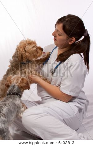 Young Vet With Two Dogs