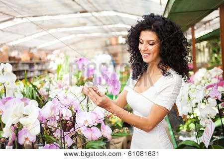 Woman looking at flowers in a florist's shop
