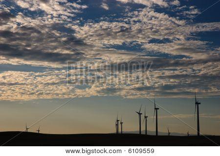 Alternative energy - wind turbine field