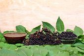 picture of elderberry  - The syrup healthy of black fruit  elderberry - JPG