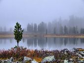 Fog on mountain lake