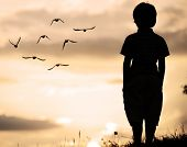 picture of grass bird  - Alone kid standing on field looking far away on birds flock - JPG