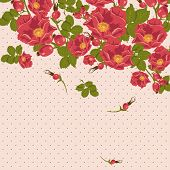 stock photo of wild-brier  - Floral ornament with wild rose on a polka dot background - JPG