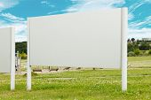 Blank billboard in the park