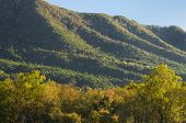 picture of cade  - A colorful autumn mountain scenic in Cade - JPG