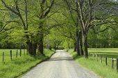 Sparks Lane In Cades Cove Of Smoky Mountains, Tn, Usa.