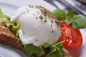 picture of benediction  - sandwich with egg Benedict and tomato on a plate closeup - JPG