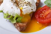 image of benediction  - Eggs Benedict with bread and tomato on a plate close up horizontal - JPG