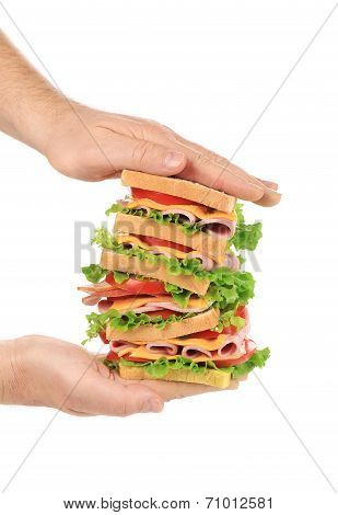 Big fresh sandwich in hands.