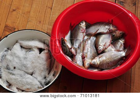 Fresh and salted fish