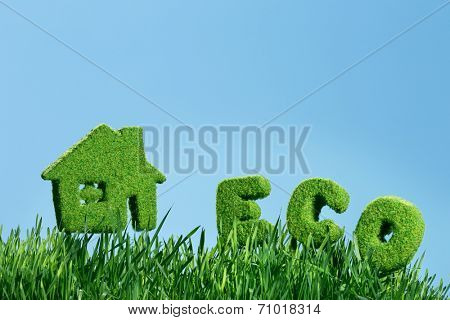 house from grass and word eco on blue sky