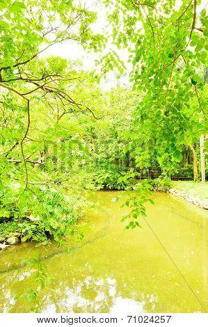 Botanical Garden, Taipei Taiwan