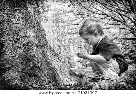 Young Boy Looking At Twig In His Hands - Black And White