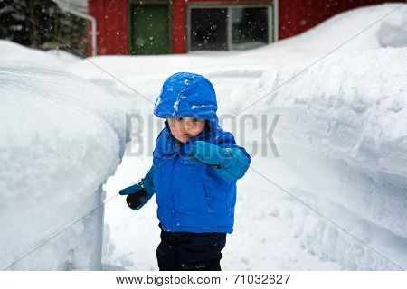Boy Looking Snow On His Glove