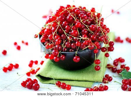 Redcurrant. Ripe and Fresh Organic Red Currant Berries in a bowl over white background