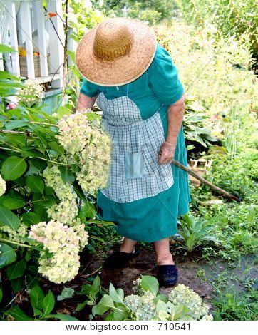 Grandmothers Flowers