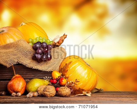Seasonal harvested agriculture products in wooden box with blur background