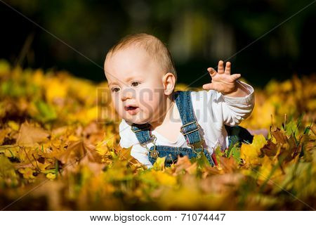 Happy childhood - fall sunny day