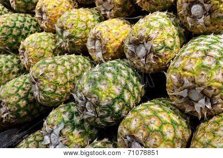 Closeup Of  Pineapples