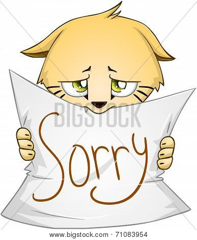 Cute Kitten Holds Sign Of Apology