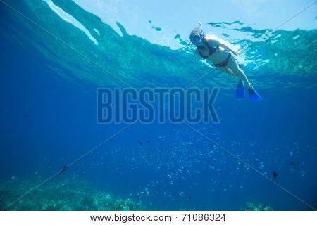 Underwater photo of woman snorkeling in tropical water