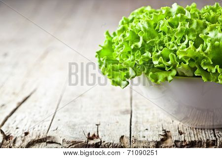 lettuce salad in a bowl closeup on rustic wooden table