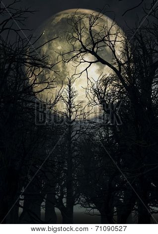 Halloween background with moonlit sky and spooky trees