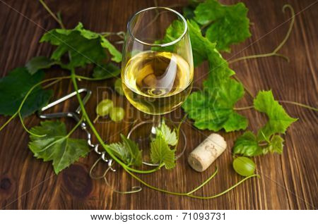 White Wine In A Glass With Vine