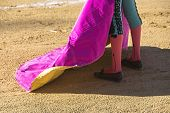pic of bullfighting  - Spanish Bullfighter with the Cape in the Sabiote bullring Sabiote Jaen pronvince Spain - JPG