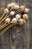 stock photo of opiate  - Poppy heads on a vintage wooden table - JPG