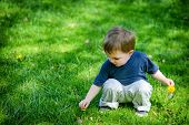 pic of dandelion  - A young boy outside at a park picks a dandelion flower while holding a dandelion flower in his other hand - JPG
