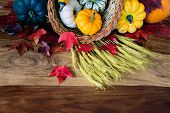 pic of cornucopia  - A cornucopia with squash gourds pumpkins wheat and leaves on an old antique harvest table - JPG