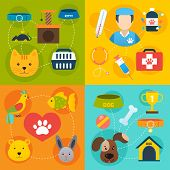 image of veterinary  - Veterinary pet food and health care infographic flat isolated vector illustration - JPG