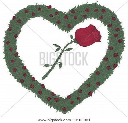 Rose Heart Rose Bushes Illustration
