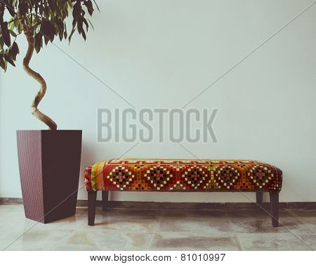 Ficus Tree In Living Room Next To A Sofa