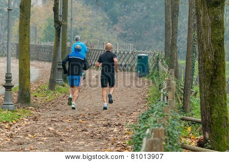Men Jogging In Park In Autumn