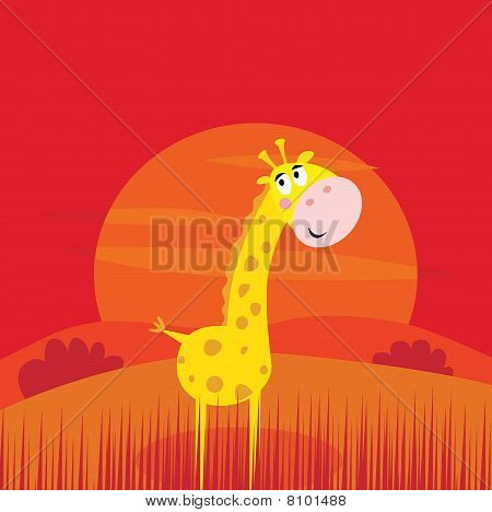 Safari animals - cute giraffe and red sunset scene behind