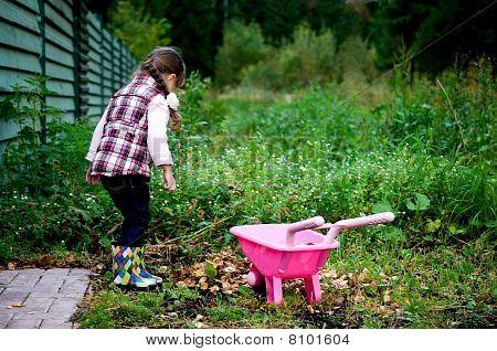 La muchacha mantiene hojas de otoño