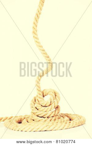 Enrolled long thick brown rope.