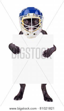 French Bulldog Hockey Helmet