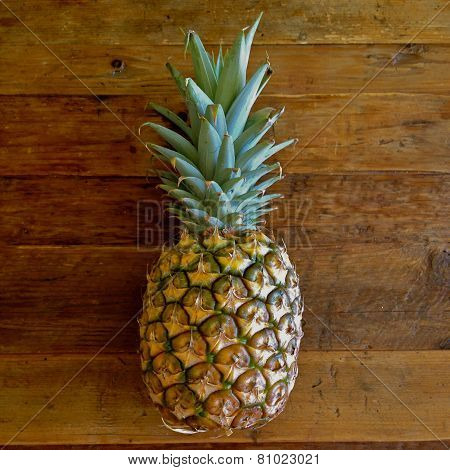 Hawaiian Crown Sweet Gold Pineapple