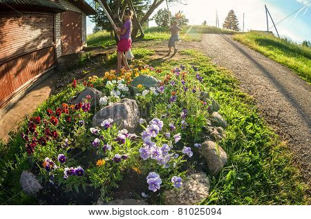 Children Swinging On The Swing Near The Flowerbed In Sunny Summer Day