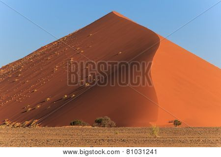 Mighty Red Sanddune Sossusvlei