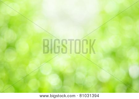 Green Natural Bokeh Background
