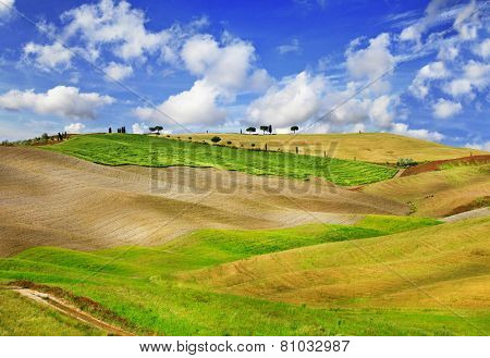 Tuscany landscapes. golden hills of Orcia.