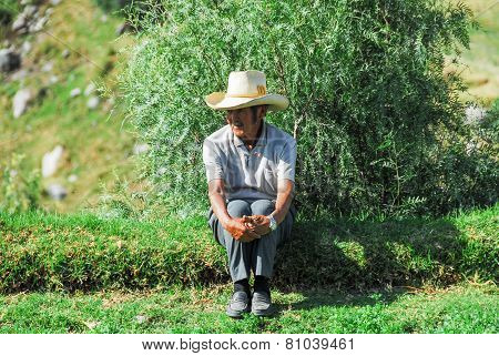 Peruvian Farmer In Arequipa
