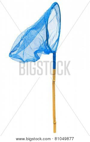 blue butterfly net on a white background