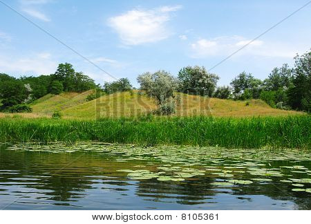 Meadow Near The River